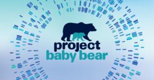 Project Baby Bear logo